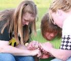 Prayer Focus: Rapid Spread of the Good News
