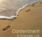 Contentment In the Now