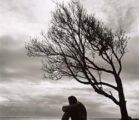 Loneliness Runs Deep