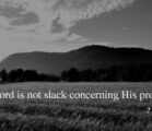 He is Faithful to His Promises