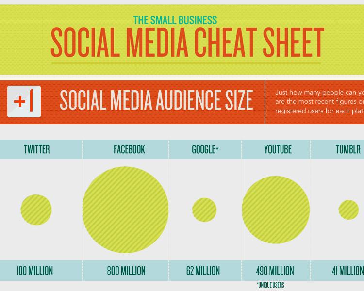 social_media_infographics_cheatsheet[1]