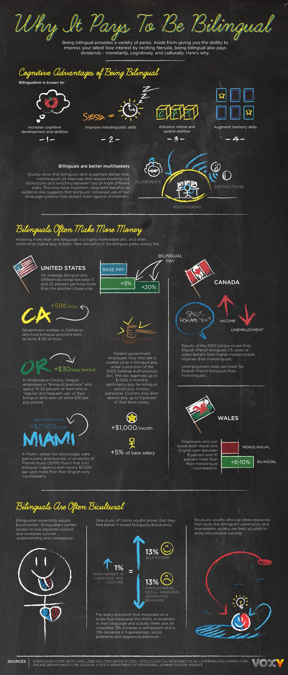 voxy-bilingual-infographic[1]