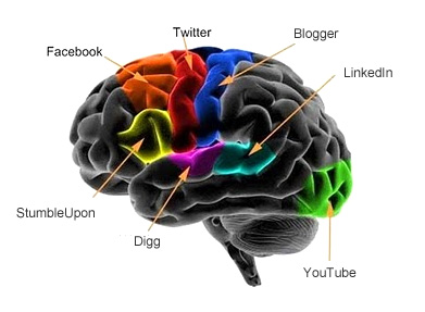 Brain1[1]