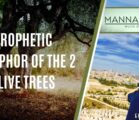 PROPHETIC METAPHOR OF THE 2 OLIVE TREES | EPISODE 986