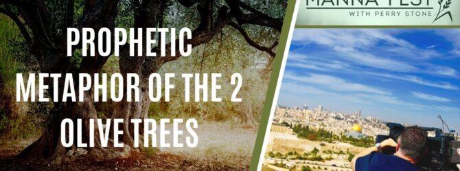 PROPHETIC METAPHOR OF THE 2 OLIVE TREES | EPISODE 986