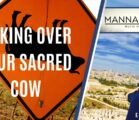Kicking over Your Sacred Cow | Episode 997