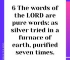 The Scripture consists of 66 separated books, 39 in the…
