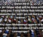 """In Muhammad's claim that he's a """"clear messenger"""" he doesn't…"""
