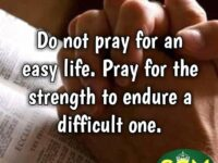 Do not pray for an easy life. Pray for the…