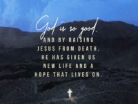 Blessed be the God and Father of our Lord Jesus…