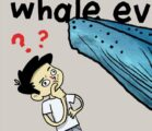 Even assuming deep evolutionary time, the story of whale evolution…