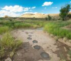 Follow the Oklahoma High Point Trail to the highest spot…