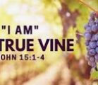 """**""""I am the True Vine""""**(John 15:1) is the last of…"""