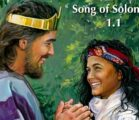 The first way we misread Song of Songs is by…