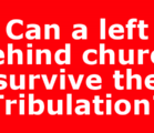 A recent post-Tribulation book by a guy who did some…