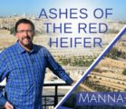 Ashes of the Red Heifer | Episode 889