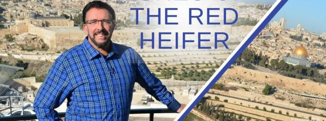 Ashes of the Red Heifer   Episode 889