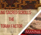 Handling Sacred Scrolls- The Torah Factor | Episode 854