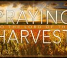 Praying to the Lord of the Harvest