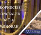 Prophecies Concealed in the Menorah | Episode 839