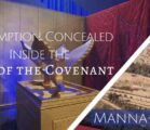 Redemption Concealed Inside the Ark of the Covenant | 835