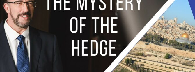 The Mystery of the Hedge   Episode 871