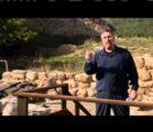 The Tribulation Code Hidden in Purim