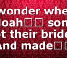 I wonder where Noah's sons got their brides. And made…