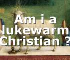 Am i a lukewarm Christian ?