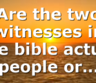 Are the two witnesses in the bible actual people or…