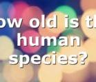 How old is the human species?