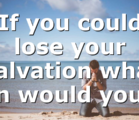 If you could lose your Salvation what sin would you…