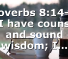 "Proverbs 8:14-16 "" I have counsel and sound wisdom; I…"