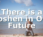 There is a Goshen in Our Future