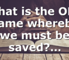 What is the ONE name whereby we must be saved?…