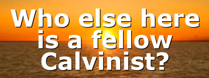 Who else here is a fellow Calvinist?