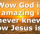 Wow God is amazing i never knew how Jesus is…
