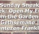 Sunday Sneak Peek: Open My Eyes from the Garden of Gethsemane | Jentezen Franklin