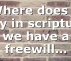 Where does it say in scripture we have a freewill…